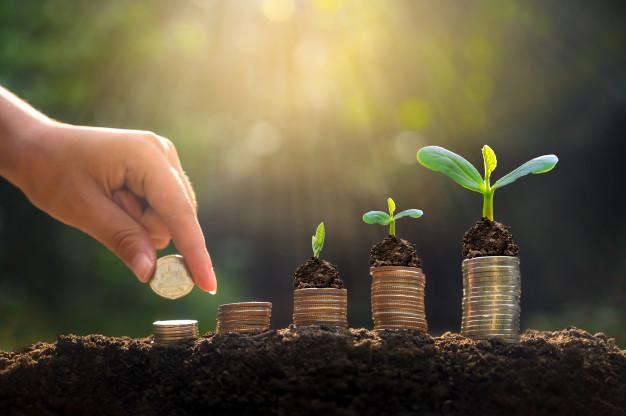 money-growth-saving-money_34998-292